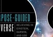 The Purpose Of The Universe