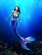 Nymphs: Life of the Sea