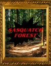Sasquatch Forest
